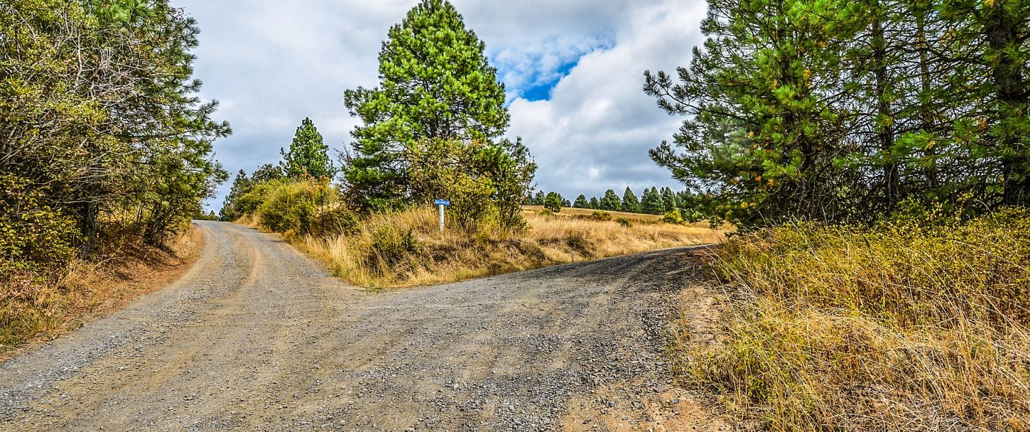 A fork in a country road